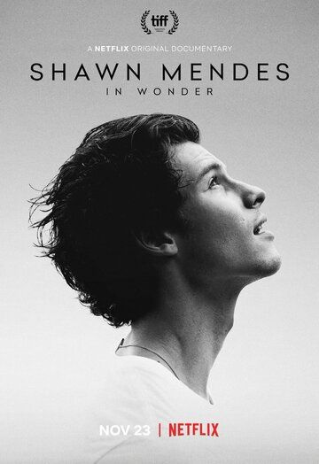 Шон Мендес: In Wonder / Shawn Mendes: In Wonder (2020)